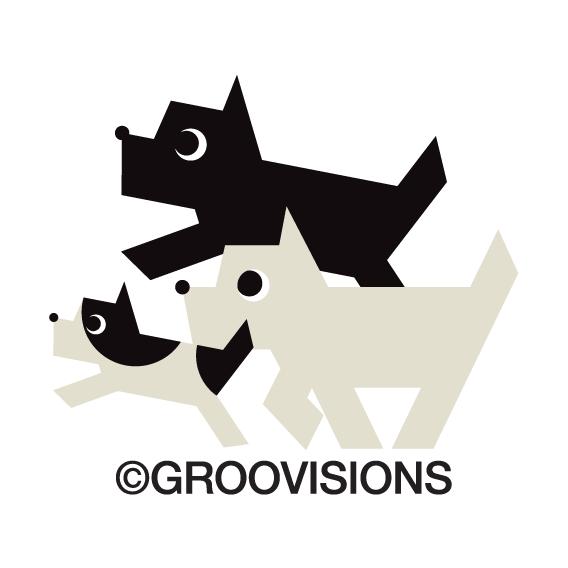 Description Groovisions