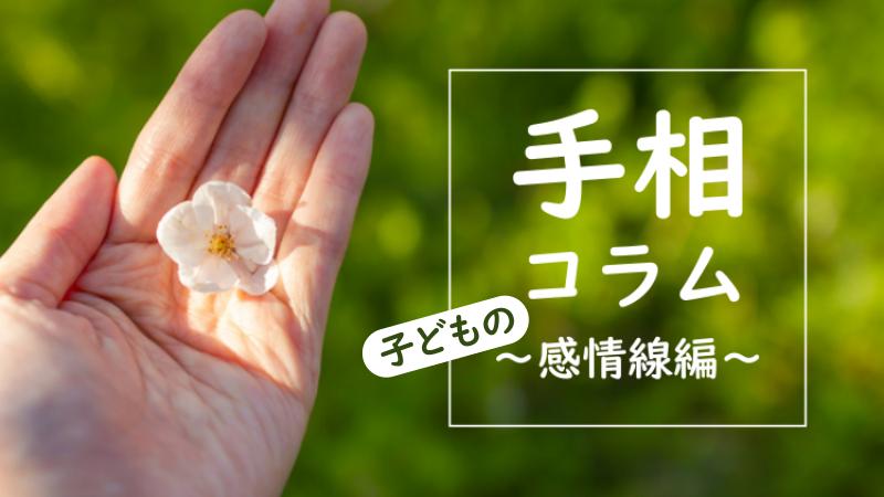 子どもの感情線について 西日本シティ銀行